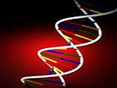 اوتیسم ممکن است به ویژگی های غیر طبیعی سیستم ایمنی بدن و یک جزء پروتئینی جدید مرتبط باشد