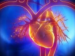 ارتباط بین نارسایی قلبی و دیستروفی عضلانی